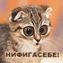 Сергей Алексеевич